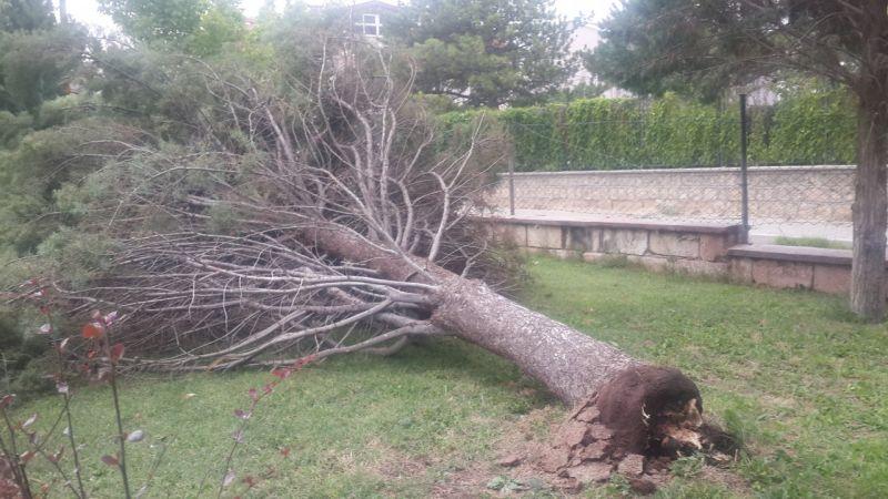 Fırtına Avanos'ta hayatı olumsuz etkiledi