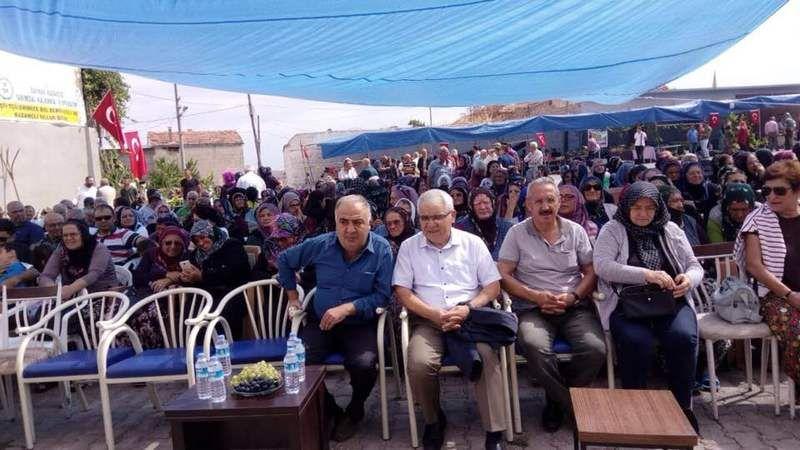 Bağ Bozumu ve Üzüm Festivali Göynük'te Düzenlendi