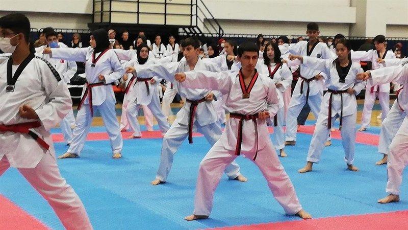 Taekwondo Terfi Sınavında Nevşehirli Sporcular 10'da 10 Yaptı