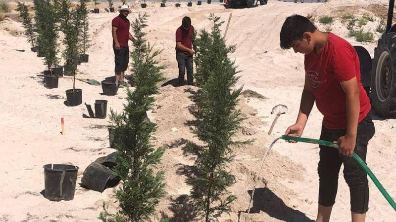 Seyitoğulları Tohumculuk'un Katkılarıyla 1500 Fidan Toprakla Buluştu