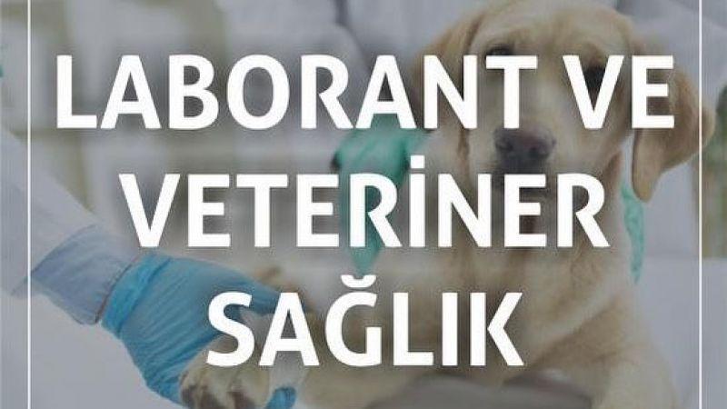 Loborant ve Veteriner Sağlık Programı Öğrenci Kayıtları Başlıyor