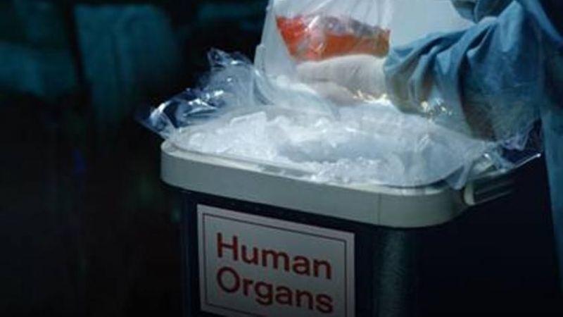 Organ Ticareti Yapan 2 Kişi Tutuklandı