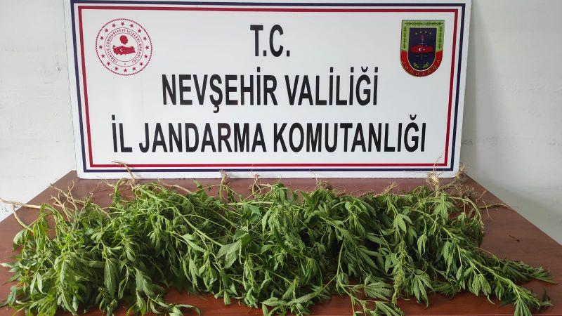 Jandarma Ekiplerinden Uyuşturucu Operasyonu!