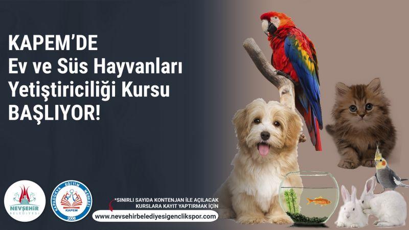 Nevşehir'de Ev ve Süs Hayvanı Satıcılarına Eğitim