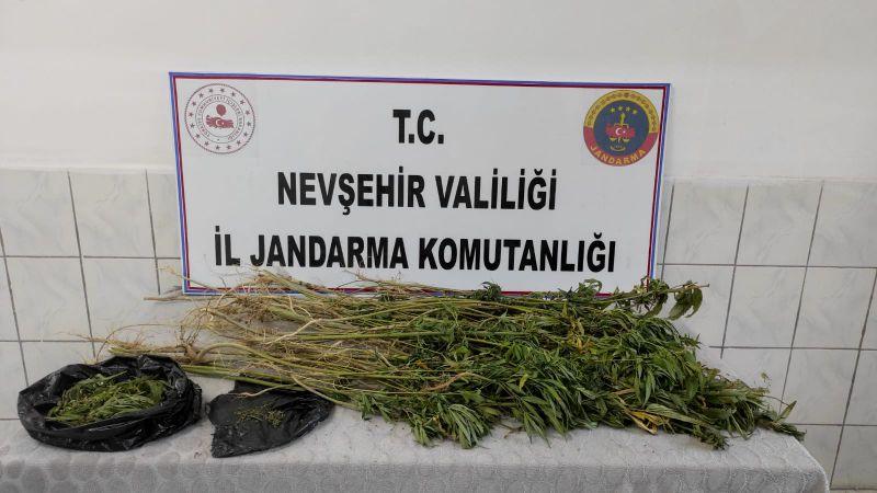 Nevşehir'de Jandarma Uyuşturucuya Geçit Vermiyor