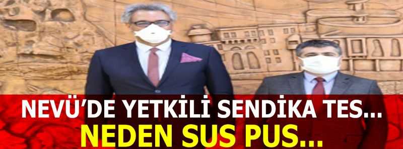 Nevşehir Hacıbektaş Veli Üniversitesi'de TES'in Menfaati Nedir?