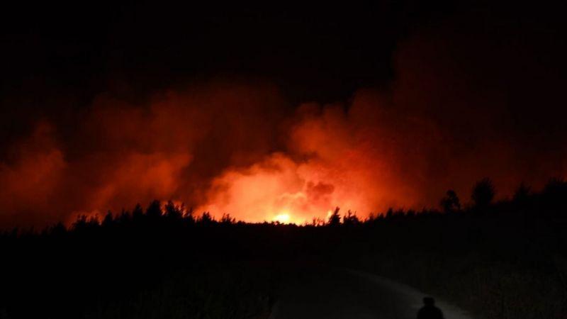 Kim yakıyor bu ormanları ?
