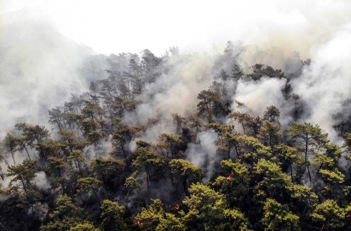 Yangın bölgesinden gelen son görüntüler içimizi yaktı