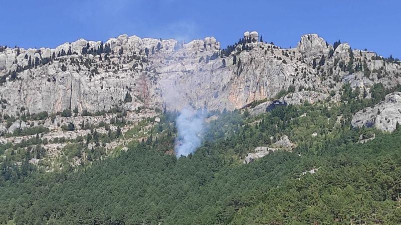 Aynı yerde orman yangını çıktı