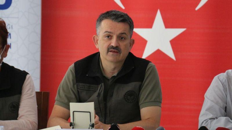 Türkiye'nin yaşadığı yangın kabusu nihayet sona erdi