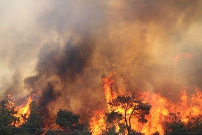 orman yangınına havadan müdahale ediliyor