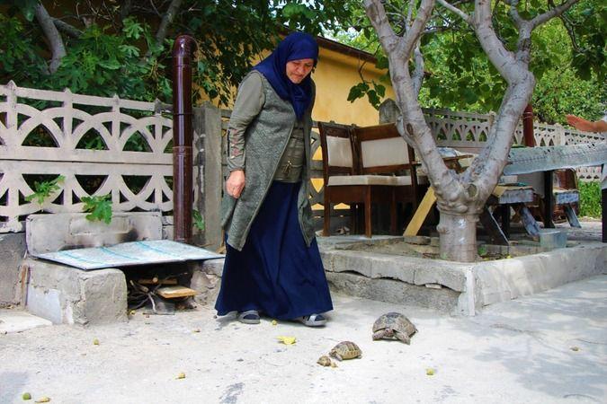 Kaplumbağalara fısıldayan teyze