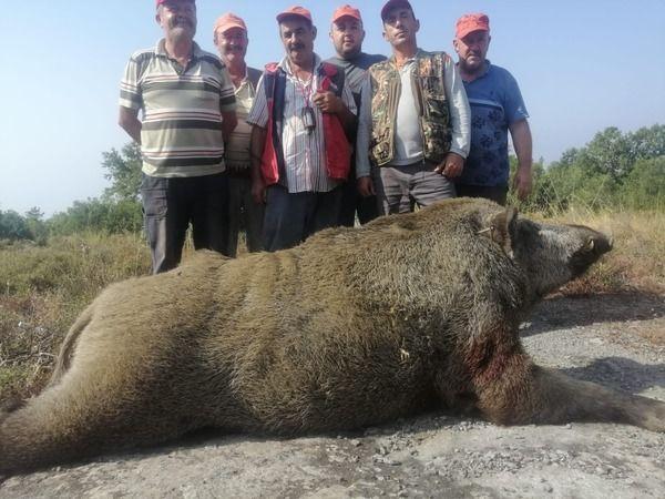 Köy canavarı vuruldu