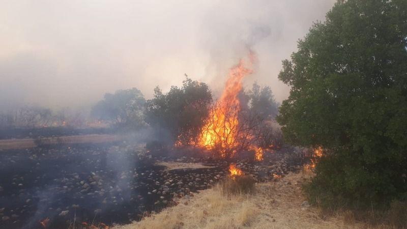 Gaziantep'in ilçesinde yangın devam ediyor