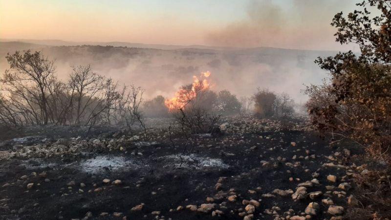Gaziantep'teki orman yangınında son durum ne ?