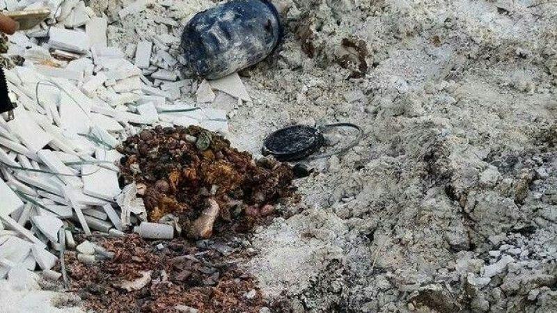 Boş arazide insan vücudu parçaları bulundu
