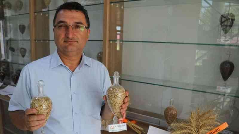 Doğu Akdeniz Tarımsal Araştırma Enstitüsünden çiftçi için 10 yeni tohum çeşidi
