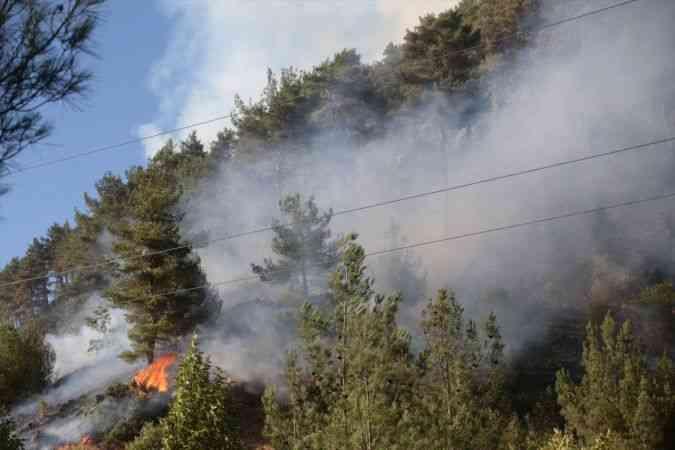 Kahramanmaraş'ta çıkan orman yangınına havadan ve karadan müdahale ediliyor