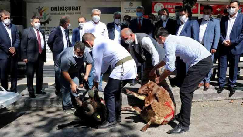 """Kahramanmaraş'ta """"doğal gaz müjdesi""""ne kurban kesildi"""