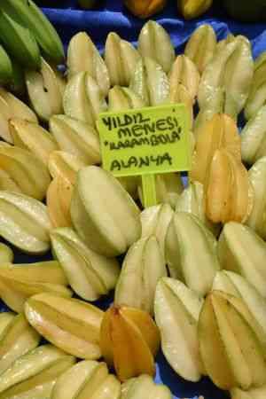 Tropikal meyve Alanyalı üreticinin kazanç kapısı oldu