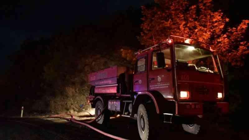 Mersin Anamur'daki orman yangını kontrol altına alındı
