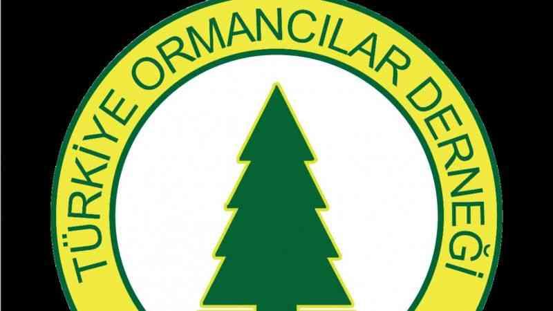 Türkiye Ormancılar Derneği: İkizdere'deki doğa düşmanı bu proje iptal edilmelidir