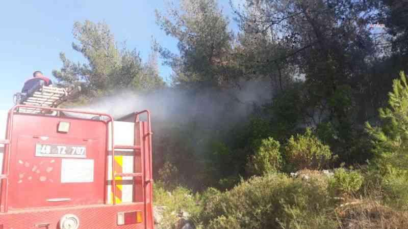 Bodrum'da orman yangını ucuz atlatıldı