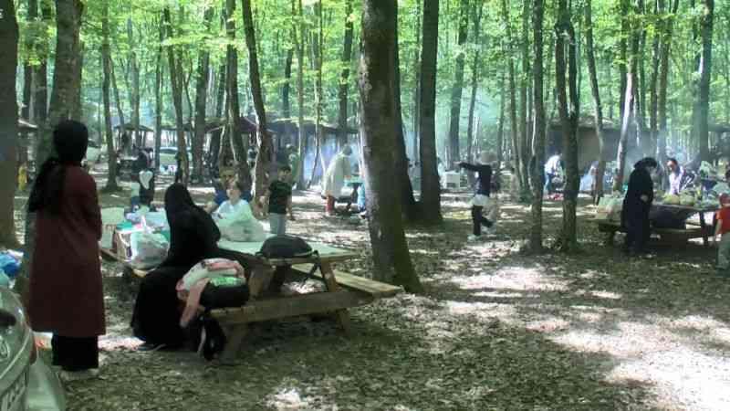 Tatili fırsat bilen İstanbullular Belgrad Ormanı'na akın etti