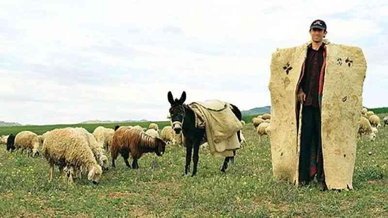 Günün Hikayesi  Çoban Meteorolog Olursa