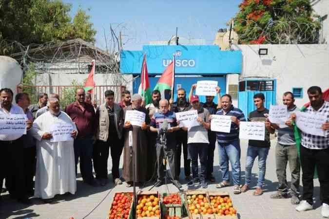 Gazzeli çiftçiler İsrail'in yeni ihracat kararı nedeniyle ellerinde çürüyen domatesleri sokağa döktü