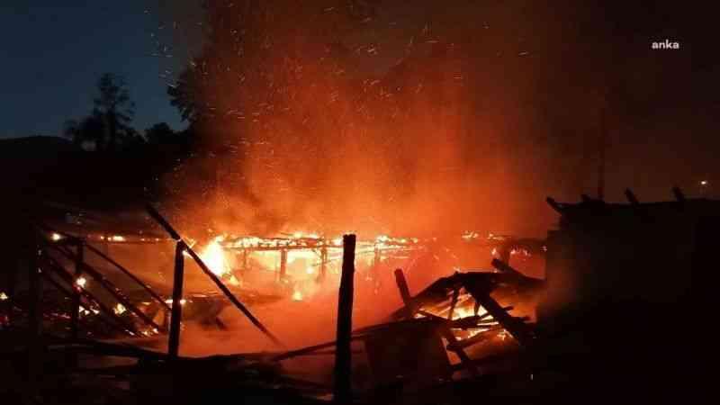 Restoranda çıkan yangın ormana sıçradı