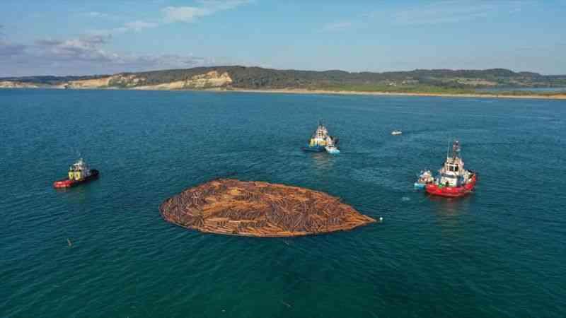 Sel felaketi bölgesinde deniz, tomruklardan arındırılıyor