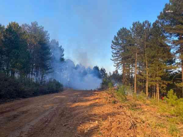 Denizli'nin Babadağ ilçesinde orman yangını