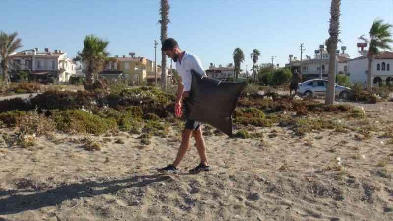 Deniz kaplumbağalarının yaşam alanları temizlendi