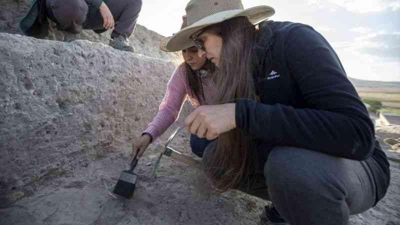 Pulur Höyük kazılarında neolitik ve kalkolitik dönemlere ait izlere rastlandı