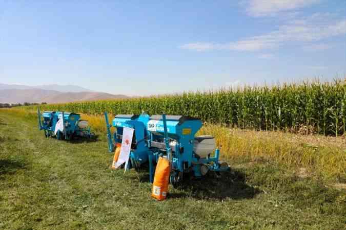 Van'da devlet destekli yetiştirilen silajlık mısırın hasadına başlandı