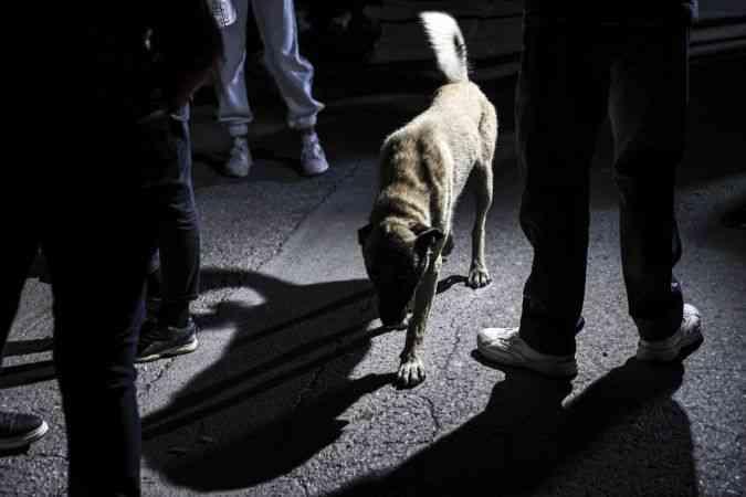 Barınaktaki köpeklerin belediye ekiplerince ölüme terk edilmeye çalışıldığı iddia edildi