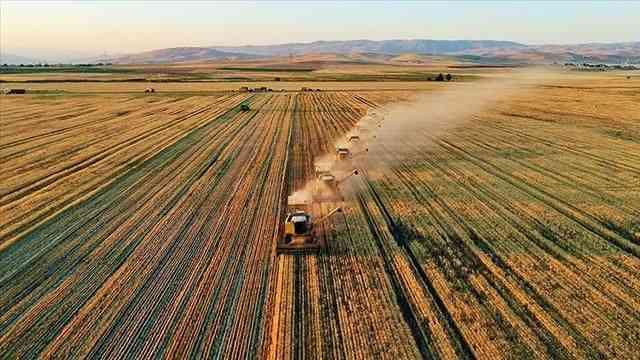 Tarım-ÜFE bir yılda yüzde 23,35 arttı
