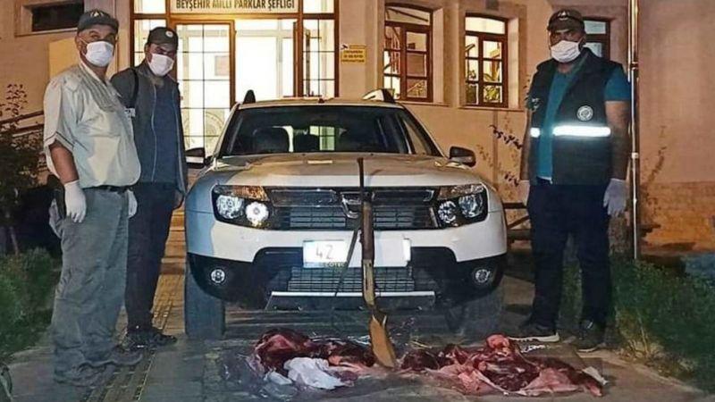 Konya'da yaban hayvanı avına 61 bin 998 lira ceza