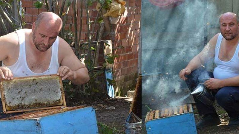 Ordulu çılgın arıcı, gömleğini çıkarıp arıların arasına daldı