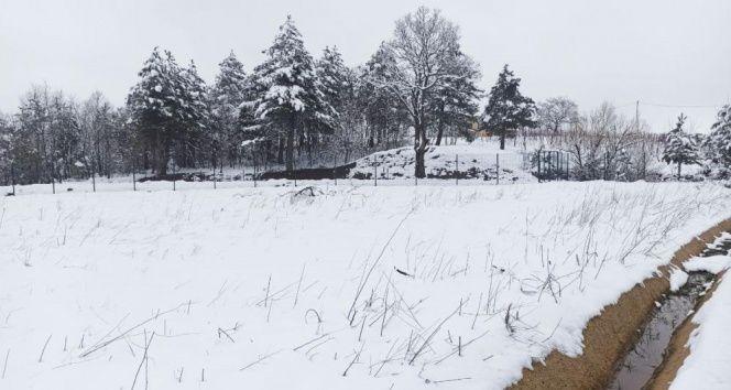 Bursa'da kar kalınlığı 20 santimetreye ulaştı