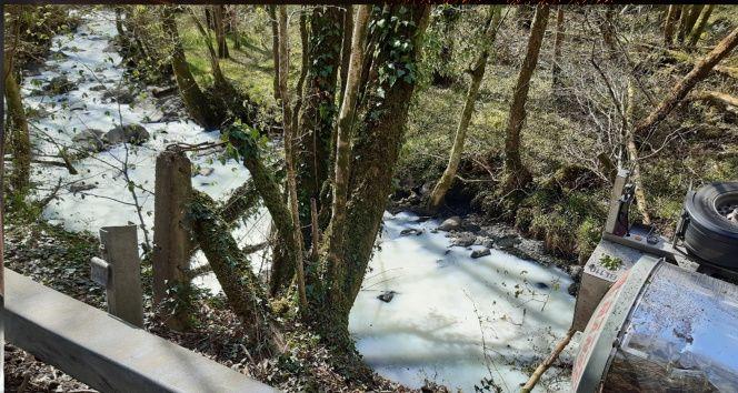 Galler'de süt tankeri nehre devrildi, nehirden su yerine süt aktı