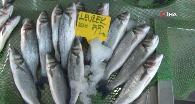 'Her balıktan balıkçının yüzü güldü'