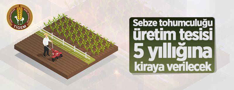 Sebze tohumculuğu üretim tesisi 5 yıllığına kiraya verilecek