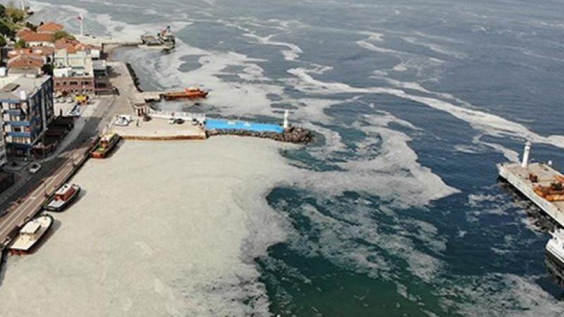 Deniz salyası yeni bir salgına neden olabilir!
