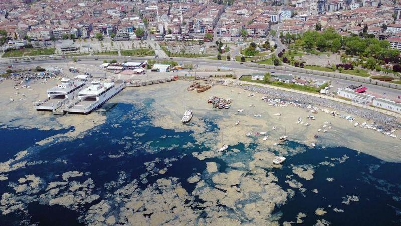 Marmara'yı kirleten o fabrika kapatıldı! Müsilajın ana nedeni kirlilik