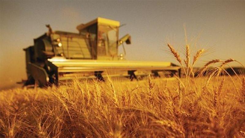 Tarım üretici fiyatları yükseldi!