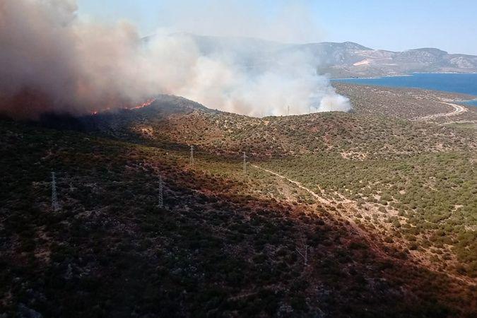 İzmir Urla'daki makilik alan yangını kontrol altında