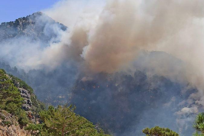 Akseki'deki orman yangınıyla ilgili bir şüpheli tutuklandı
