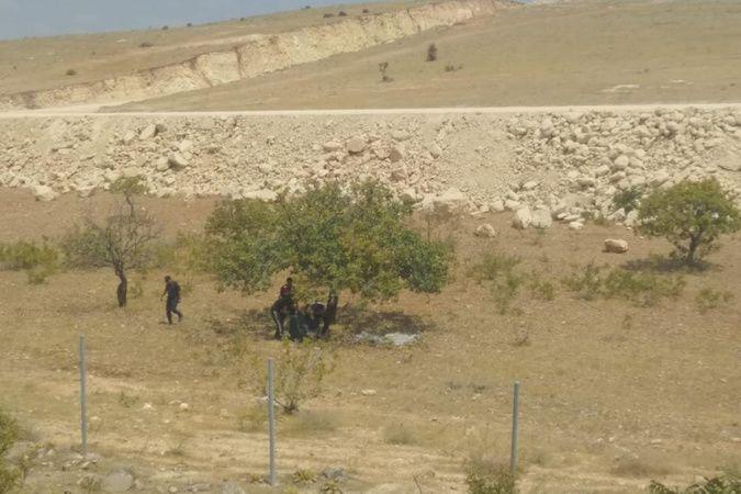 Jandarma, 150 kilo Antep fıstığı çalan hırsızları suçüstü yakaladı